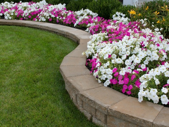 vorgarten pflegeleicht gestalten die blumenbeete schön gestalten
