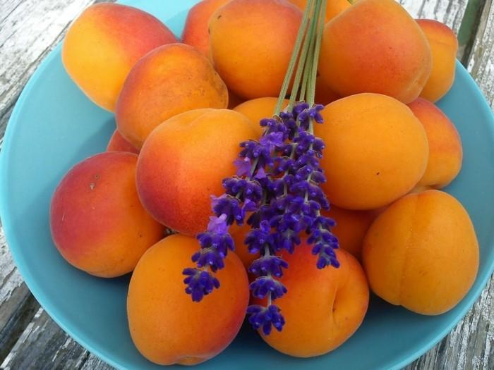weihnachstmarmelade kochen heilkräuter lavendel aprikosen