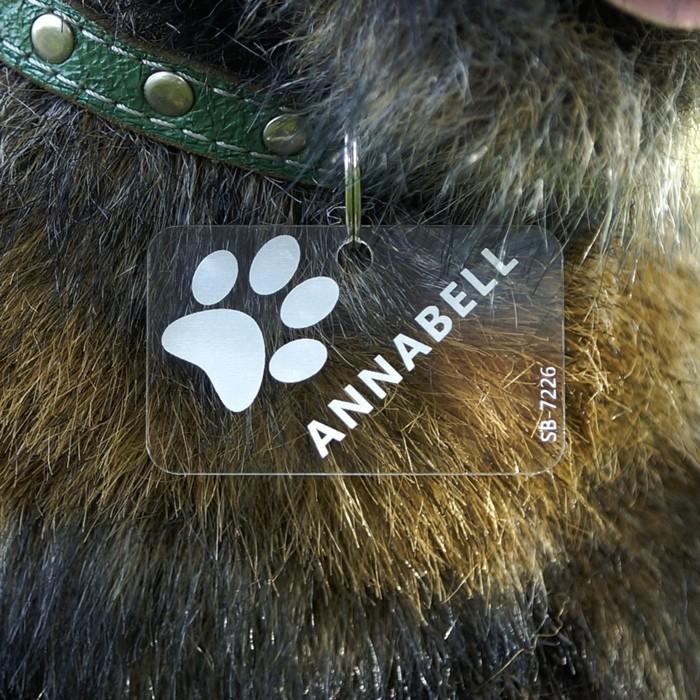 acrylglas zuschnitt hund