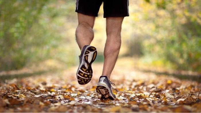 elektrosmog gefahr reduzieren durch mehr bewegung