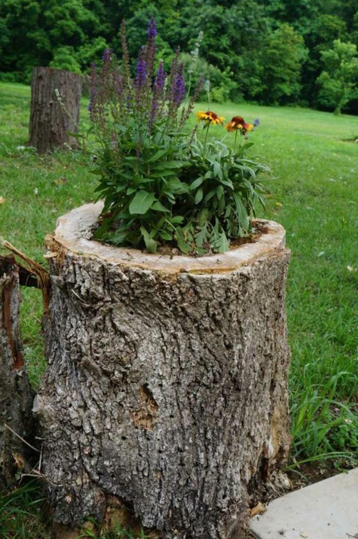 gartendeko basteln naturmaterialien baumstumpf in pflanzkasten umwandeln