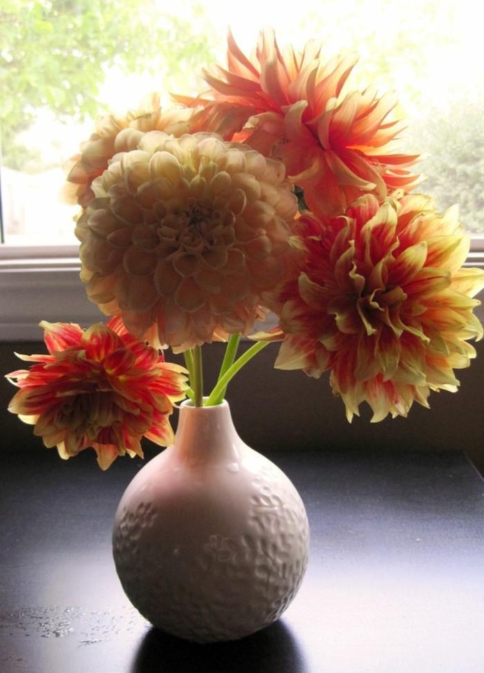 gartenpflanzen dahlie in vase