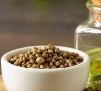 Hanföl Wirkung, Anwendungsbereiche und Rezepte