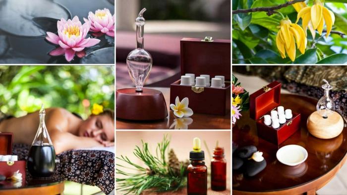 hausapothek natuerliche heilmittel ayurveda aromatherapie