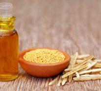 Senföl- bekannte und unbekannte Fakten über dieses natürliche Heilmittel