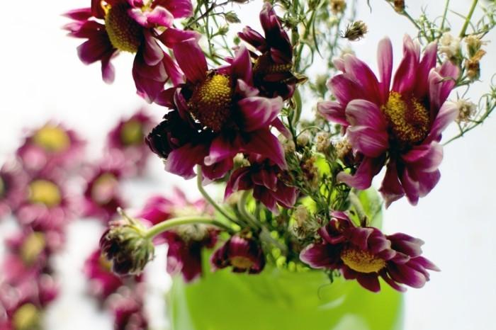 trockenblumen dekoideen für die wohnung