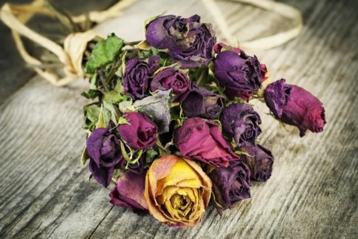 trockenblumen haben ausgefallene schönheit