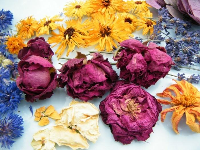 trockenblumen kreative dekoideen für zuhause