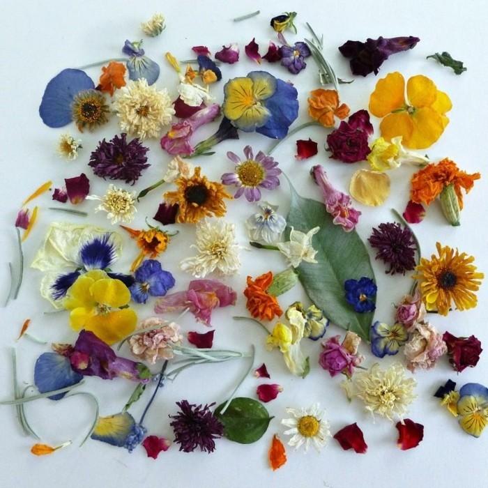 trockenblumen selber machen schöne dekoideen