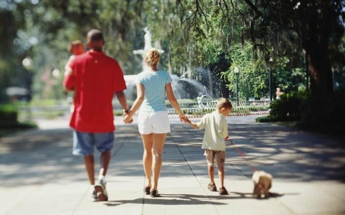 reisen und urlaub auf urlaub mit dem hund fahren