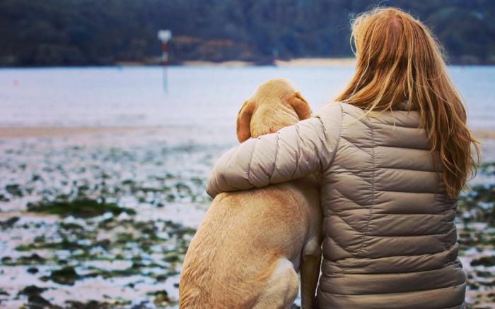urlaub mit hund schöne momente mit dem hausliebling verbringen