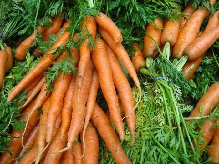 vitamine vitaminA istwichtig für das sehvermögen