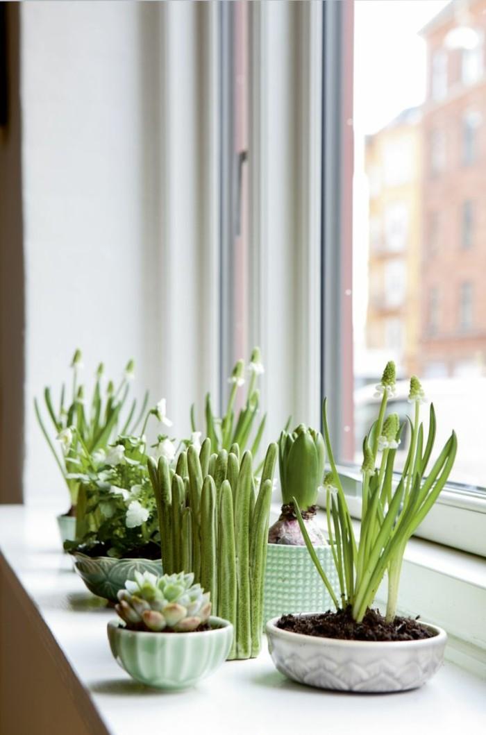 wohnung dekorieren die fensterbank mit pflanzen verschönern