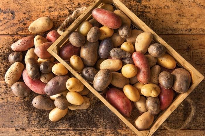 wurzelgemüse kartoffel