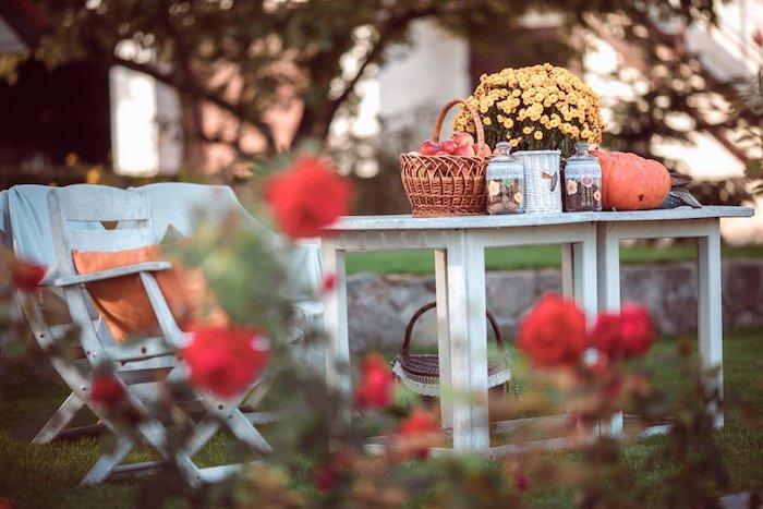 Garten Herbstdeko Chrysanthemen