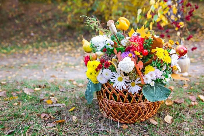 Herbst im Garten voller Blumenkorb
