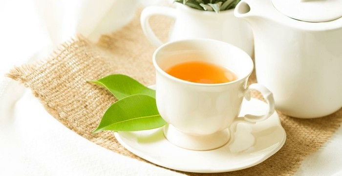 Tee trinken Körper