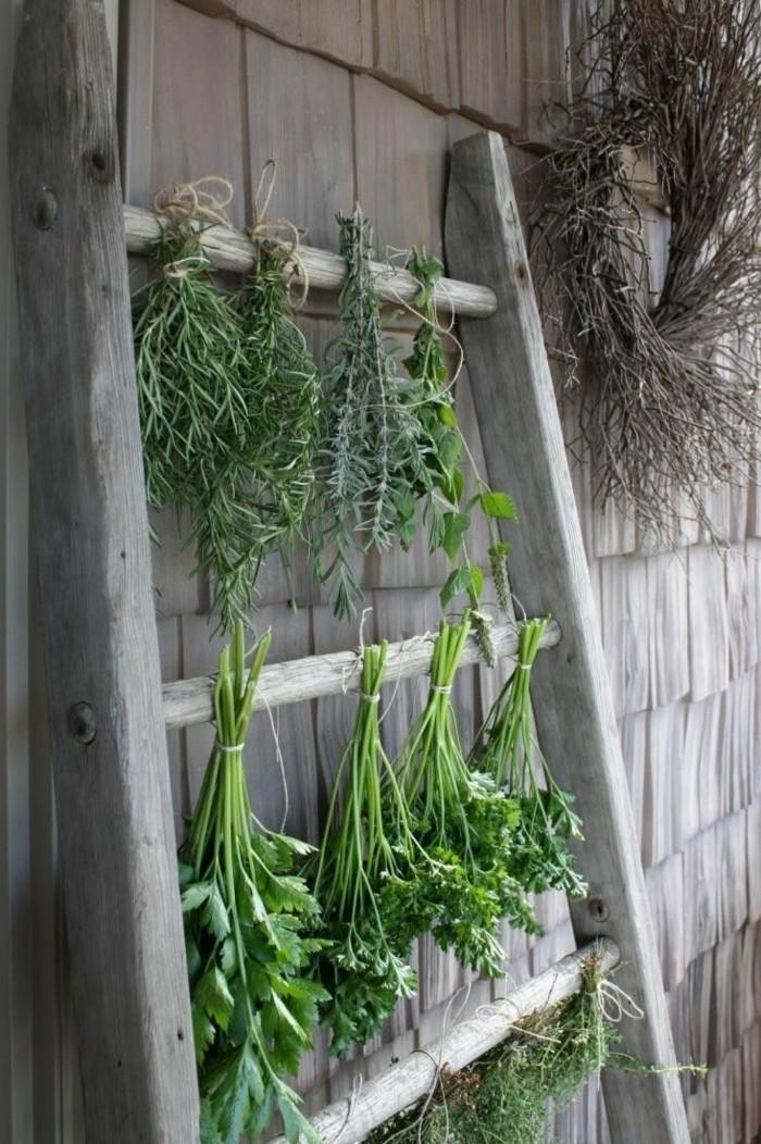 gesund leben kräuter selber trocknen und zugleich den garten dekorieren