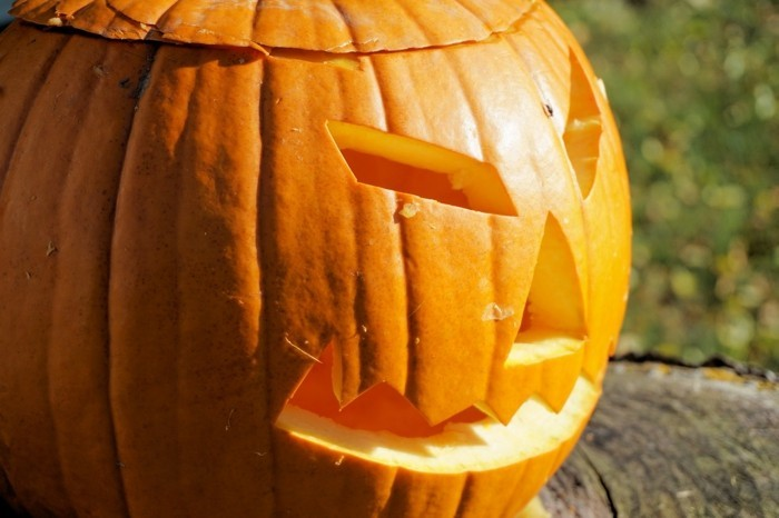 halloween bastelideen kürbis schnitzen vorlage