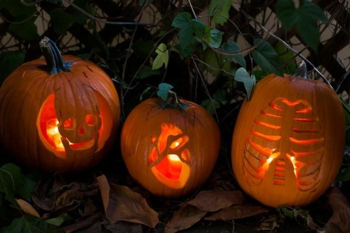 halloween kürbis schnitzvorlageböse kürbislaterne basteln mit kindern