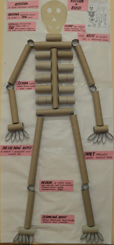 herbstbasteln mit kindern herbstdeko selber machen basteln mit klopapierrollen halloween skelett