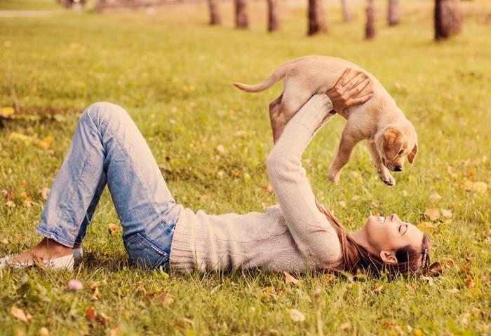 hundeleckerlies für den besten freund
