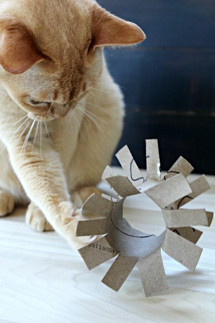 katzenspielzeug selber machen basteln mit klopapierrollen