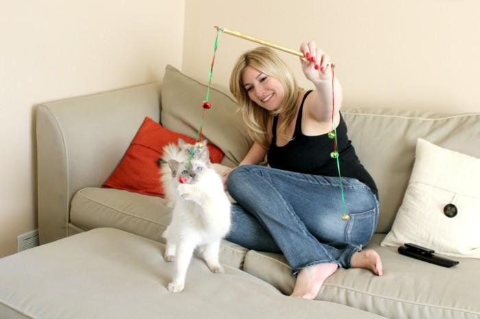 katzenspielzeug selber machen hauskatze