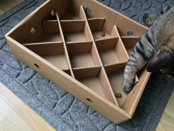katzenspielzeug selber machen jagen fangen