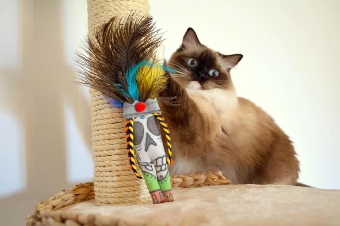 katzenspielzeug selber machen maennchen