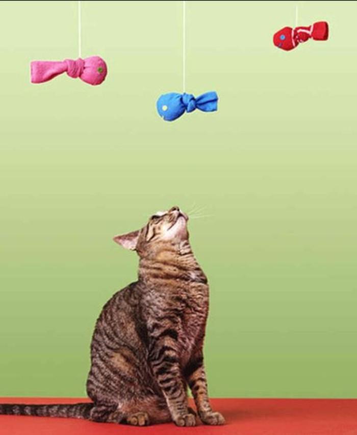 katzenspielzeug selber machen mobile selber machen