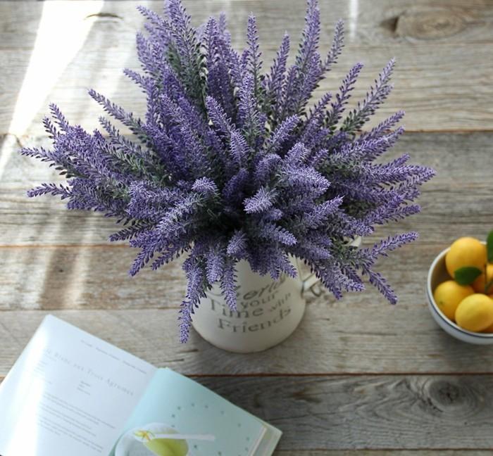 pflegeleiche zimmerpflanzen heilkraeuter lavendel