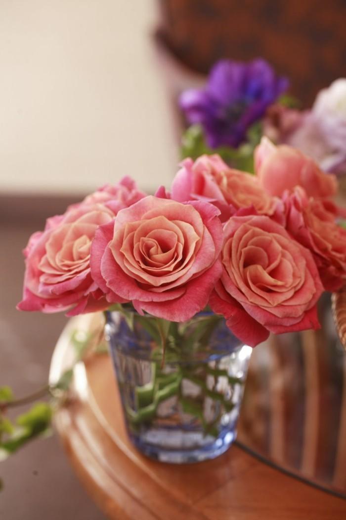 pflegeleiche zimmerpflanzen heilkraeuter rosen glas