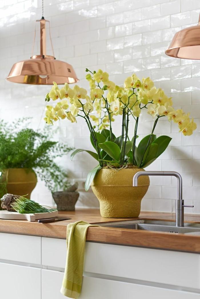 schöne dekoration mit orchideen kücheneinrichtung