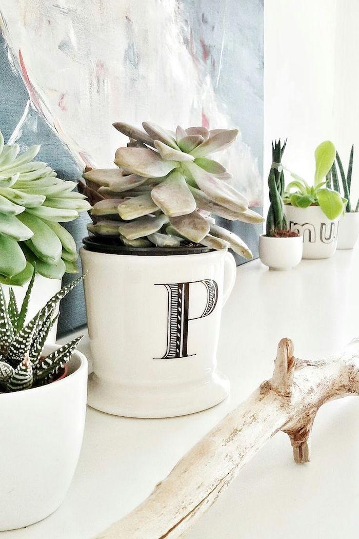 sukkulenten deko ideen bringen eine gr ne note in ihr zuhause fresh ideen f r das interieur. Black Bedroom Furniture Sets. Home Design Ideas