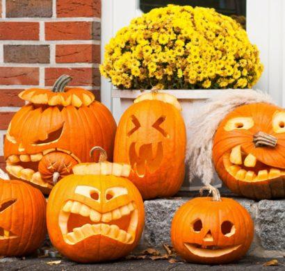 Halloween Kürbis 40 Ausgefallene Ideen Wie Sie Kürbisse Zu