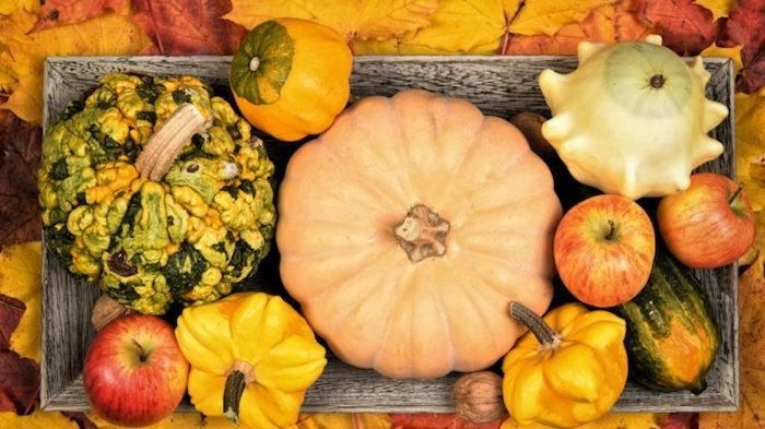 kürbisse herbst dekoration tischdeko mit kürbissen und anderen früchten