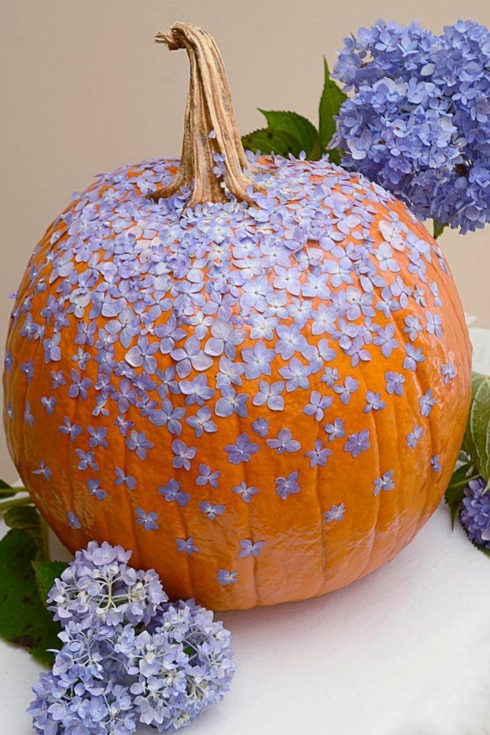 kuerbisse dekorieren lila blüte