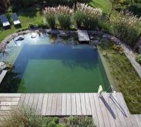 Schwimmteich im eigenen Garten: Vorteile, Einrichtungsideen und Tipps