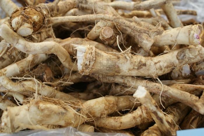 meerrettich rezept heilpflanze wurzel haufen