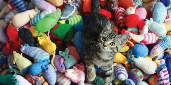 stricken fuer anfaenger kreative weihnachstgeschnke selber machen katzenspielzeug basteln