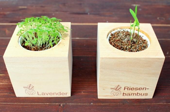 adventskalender befuellen kleine geschenkideen bambus