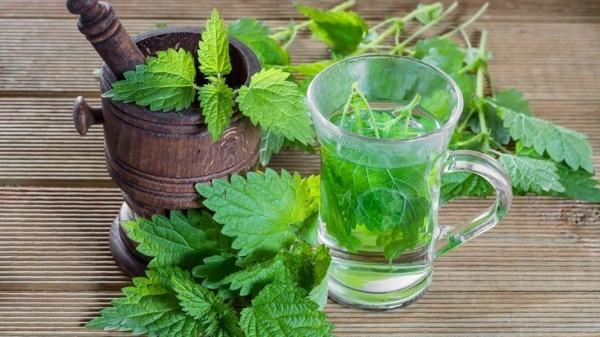 brennesseltee gesund was hilft gegen rückenschmerzen