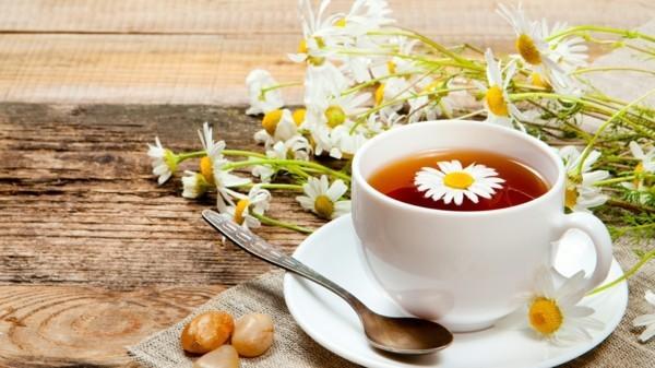 kamillentee gesund was hilft gegen rückenschmerzen