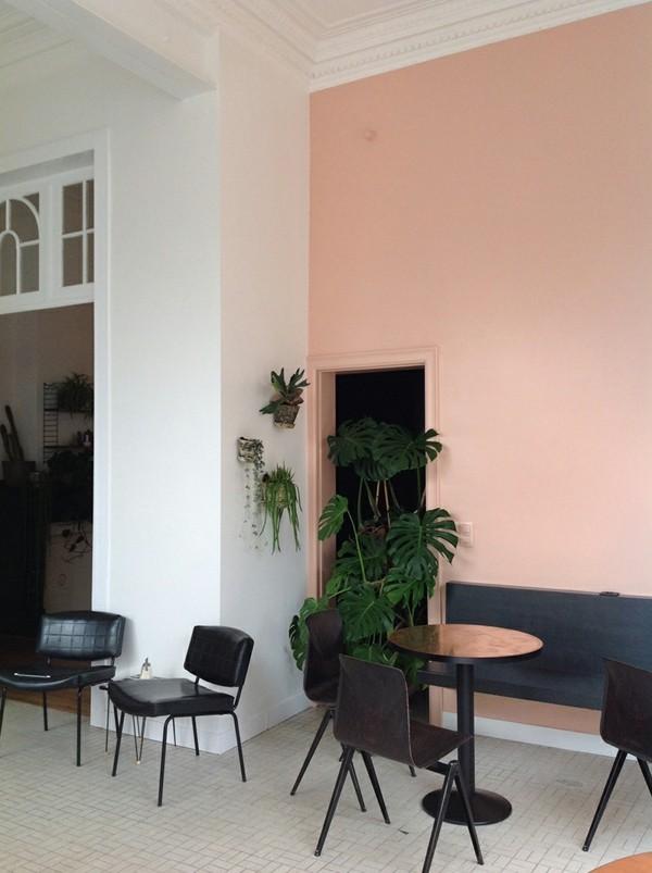 wandfarbe apricot frische ideen arbeitsplatz pflanzen - Копие