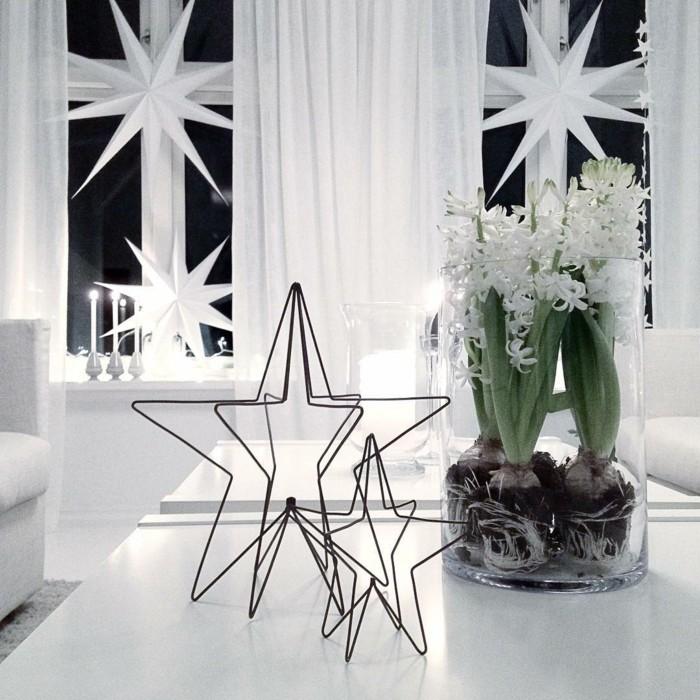 weihnachten schwarz weiss stern neben hyazynth