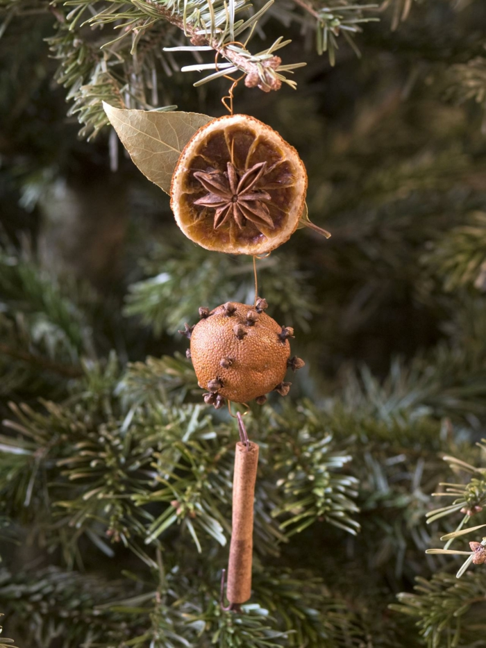 weihnachtsschmuckbasteln mit naturmaterialien orange mit nelke