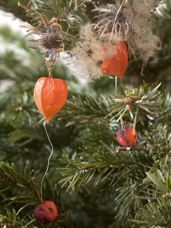 weihnachtsschmuckbasteln mit naturmaterialien physalis