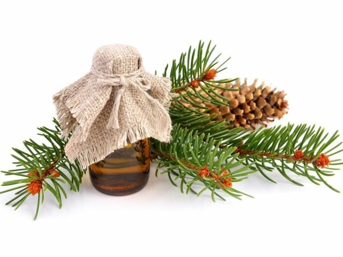 weihnachtsschmuckbasteln mit naturmaterialien weihnachtsbaum tanne