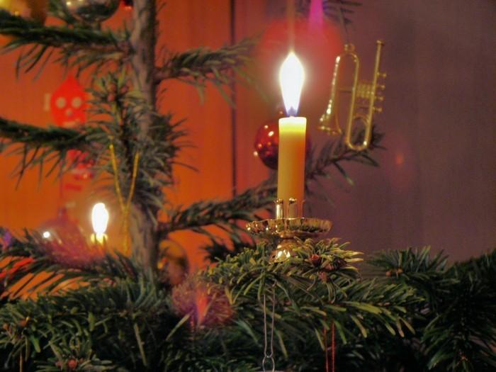 weihnachtsschmuck basteln mit naturmaterialien weihnachtskekse lichtreflex